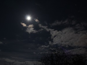 Full Moon tonight at midnight, from latitude 50°N