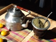 Mate, a traditional caffeinated drink